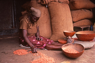 Sorting Beans, Janet Milhomme