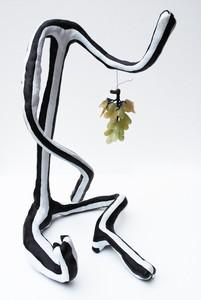 20120711210139-grapes-685x1024