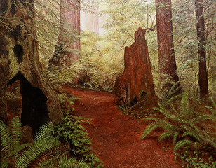 To Unknown Woods, Jeanette Sacco-Belli