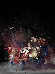 Blow Up: Untitled 4, Ori Gersht