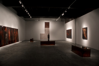 HEMOGLYPHS installation view, Jordan Eagles