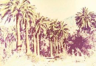Landschaft #12 , Michael Pfisterer