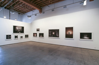 In the Absence of Others installation view, Nic Nicosia