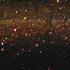 20120806074844-firefliesweb_600