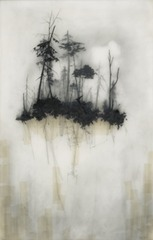 Reflection, Brooks Salzwedel