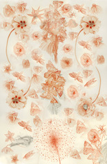Swarm, Valerie Hammond