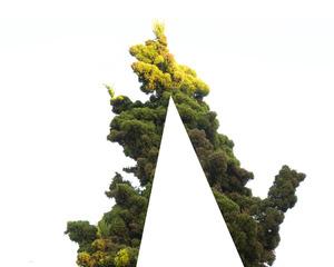 20120813154704-inner_tree