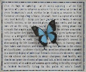 Four Ways to Blue, Jane Hammond