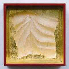 Alabaster, Patricia Malarcher