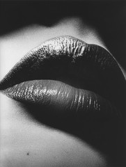 ,Daido Moriyama