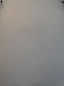 20120821065221-dsc01313