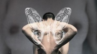 Moth, Mu Xi