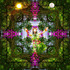 20120827225038-the-immaculate-forest-prayer_72
