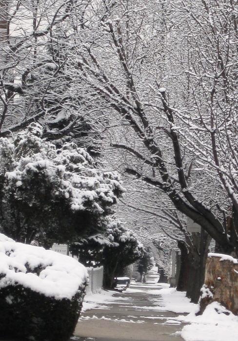 20120830132814-winter_path_-_closer_crop