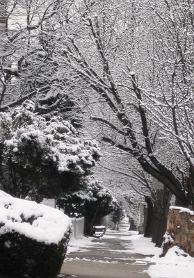 20120830132814-winter_path_-_closer_crop