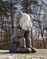 COMPANION (PASSING THROUGH), KAWS