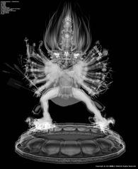 Core of Wrathful King Kong (X Ray Mode) + Core of Wrathful King Kong (Anger Brain Pathway) , Lu Yang