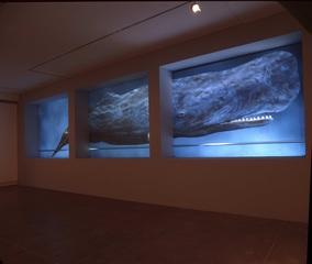 Sperm Whale, Meirav Heiman and Yossi Ben Shoshan