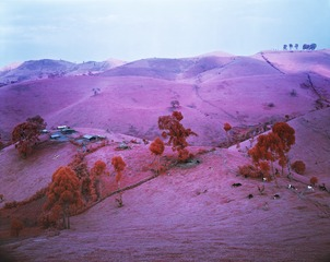 Endless Plain of Fortune,Richard Mosse