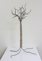 The Tree of Life, Rebecca Zemans
