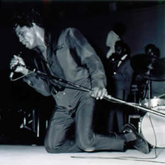 James Brown at the Mid-South Coliseum, from the portfolio The Memphis Blues Again,Ernest C. Withers