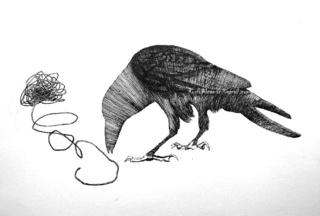Crow found the line time, Rocio Alcaman