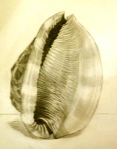 20120917154943-drawings_025