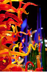 Mille Fiori, Dale Chihuly