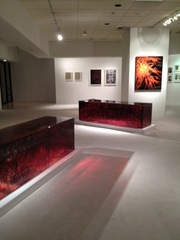 Wild Thing Gallery View,Jordan Eagles, ANNA FIDLER