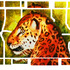 20120921052338-big_cat_design_online