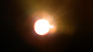 20120923224138-vogel_still