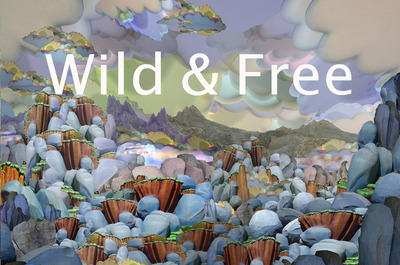 20120926193602-wildandfree_postcarda