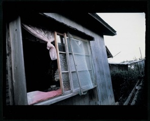 Ominato (Small Colour Portfolio) , Daido Moriyama
