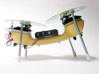 Simple Bot, Randy Sarafan