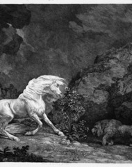 A horse affrighted by a lion , George Stubbs