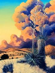 Yucca Sunset, Doug West