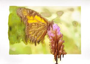 20121003152148-slurry_monarch_218-6_lighter