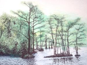 20121004203058-mixed_photos___drawings_019