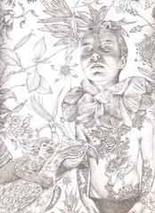 Rousseau, Lori Field