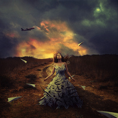 Waiting to Fly, Brooke Shaden