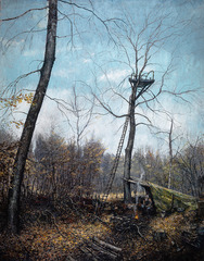 60 Years in the Forest, Chester Arnold