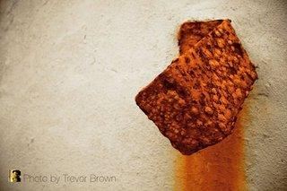 Golden Tears, Trevor Brown