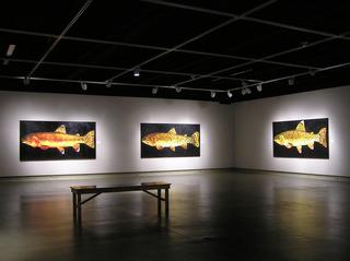 Installation in Gallery, Donald G. Longcrier