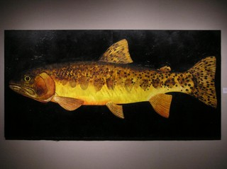 Big Colorado River Cutthroat, Donald G. Longcrier