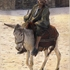 20121027170141-donkey_rider