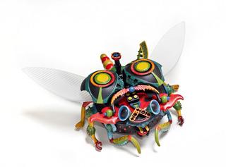 Cootie Metamorphosis, Brenda R. Gregory