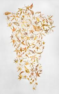20121027214136-ninety-nine_leaves__1