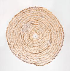 Record (Arboreal), Lisa Kokin