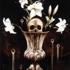 White_lilies__a_still_life_-_web
