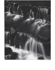 Fern Spring, Dusk, Yosemite Valley , Ansel Adams